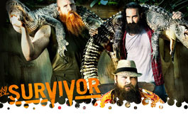 Survivor Series 2013
